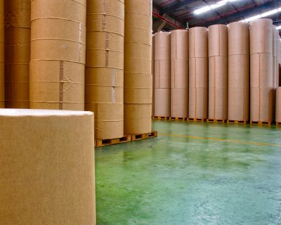 A Transformação Digital e os Desafios da Indústria de Papel e Celulose